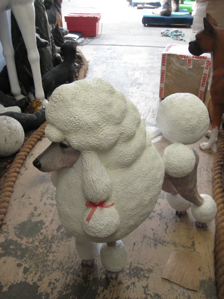 Poodle Dog - White (JR 110121) - The Jolly Roger - Life Size 3D Models ...